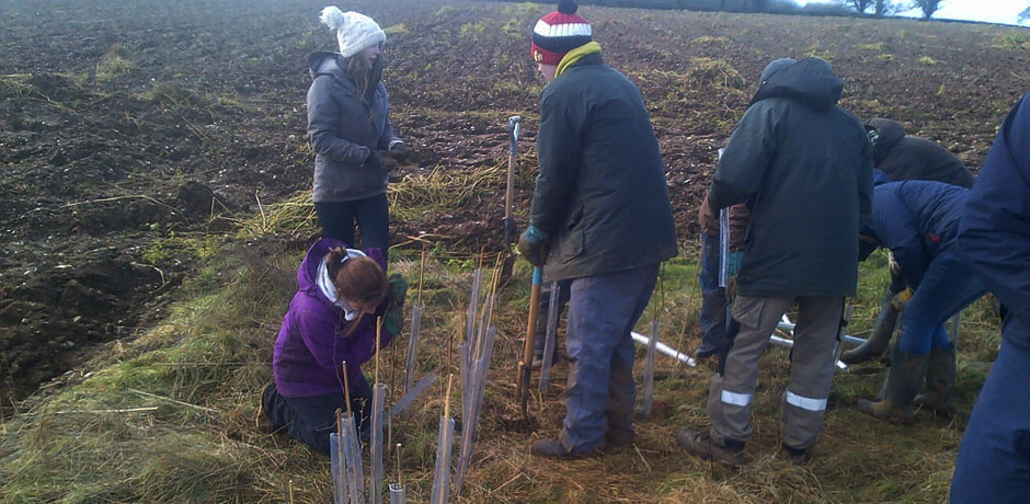 Ecology And Conservation Students Hedge Planting In