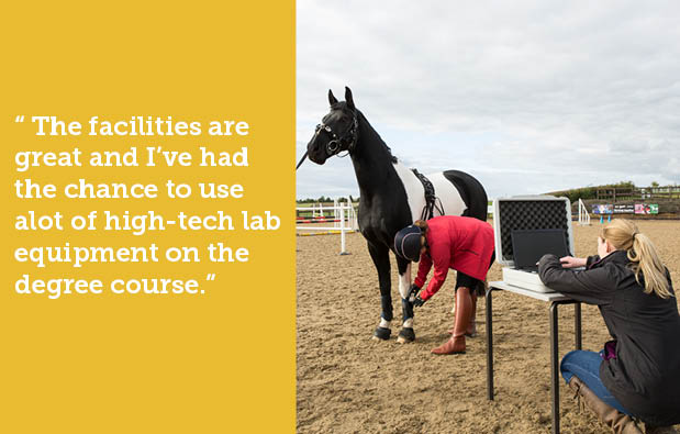 Equine HE landing page