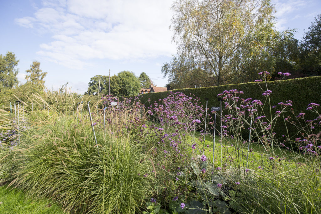 sparsholt horticulture facilities