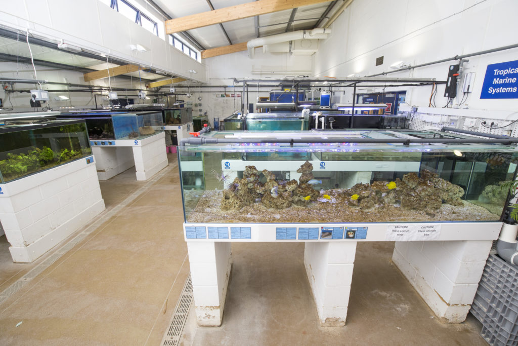 sparsholt aquatics research and conservation centre