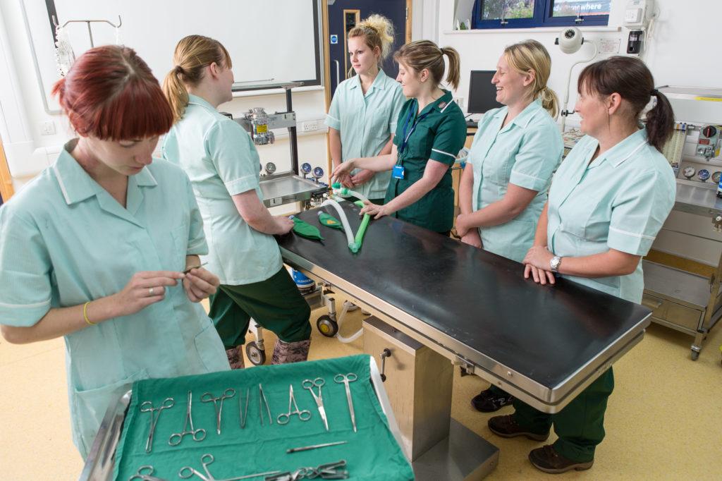 sparsholt veterinary nursing centre